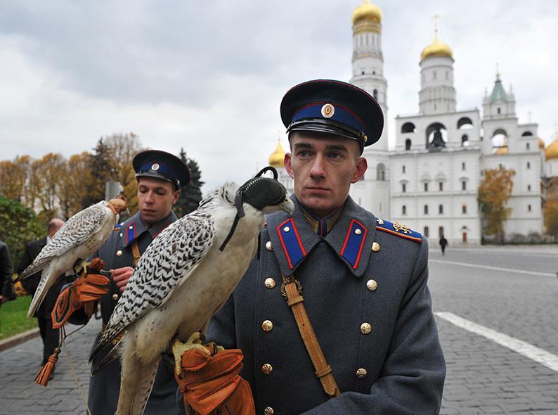Военнослужащие держат белых кречетов, изъятых у контрабандистов таможенниками в аэропорту Домодедово