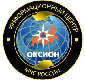 ФАУ «Информационный центр ОКСИОН»
